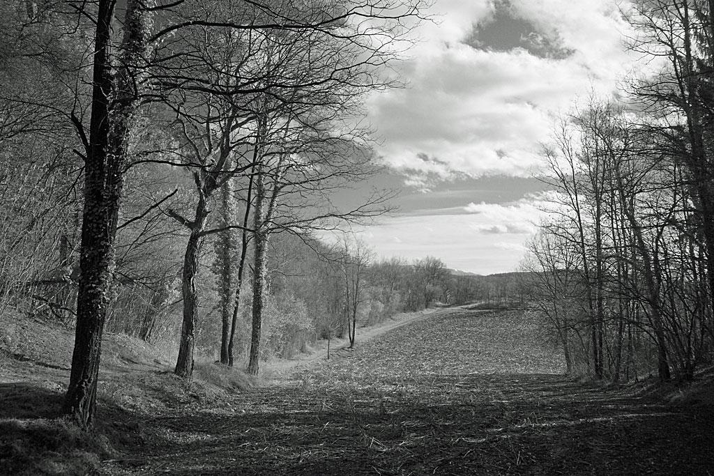 Paysage infrarouge