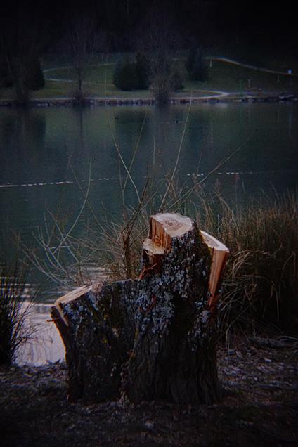 Lac de La Balme de Sillingy, Haute-Savoie