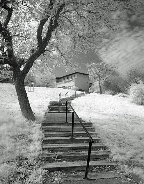 Panorama Infrarouge