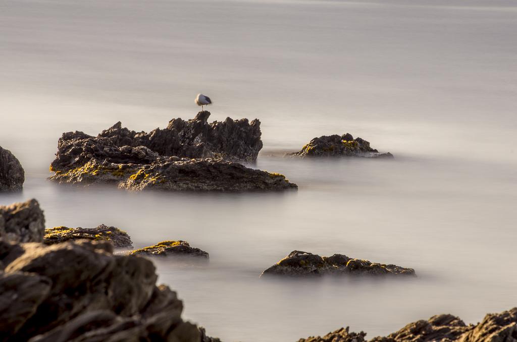 Pause longue, presque-île de Giens